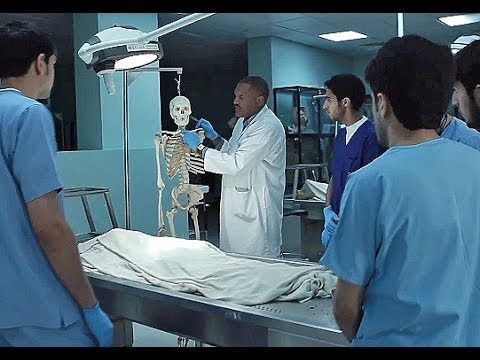 Photo of البرلمان يُصوت نهائيًا على تعديلات «مزاولة مهنة الطب» الأحد