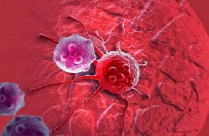 صورة دراسة تحذر: الإصابة بالسرطان تهدد 80% من الناس