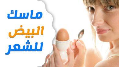 Photo of أهم 8 فوائد وماسكات البيض لشعر صحي وكثيف